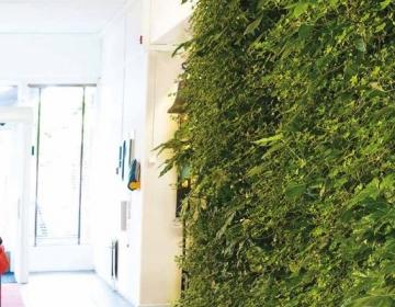 Moodulitest roheseinad ja vertikaalsed iluaiad