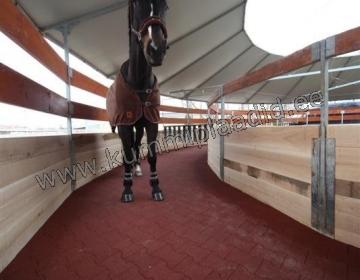 Hobusetallid ja maneezid